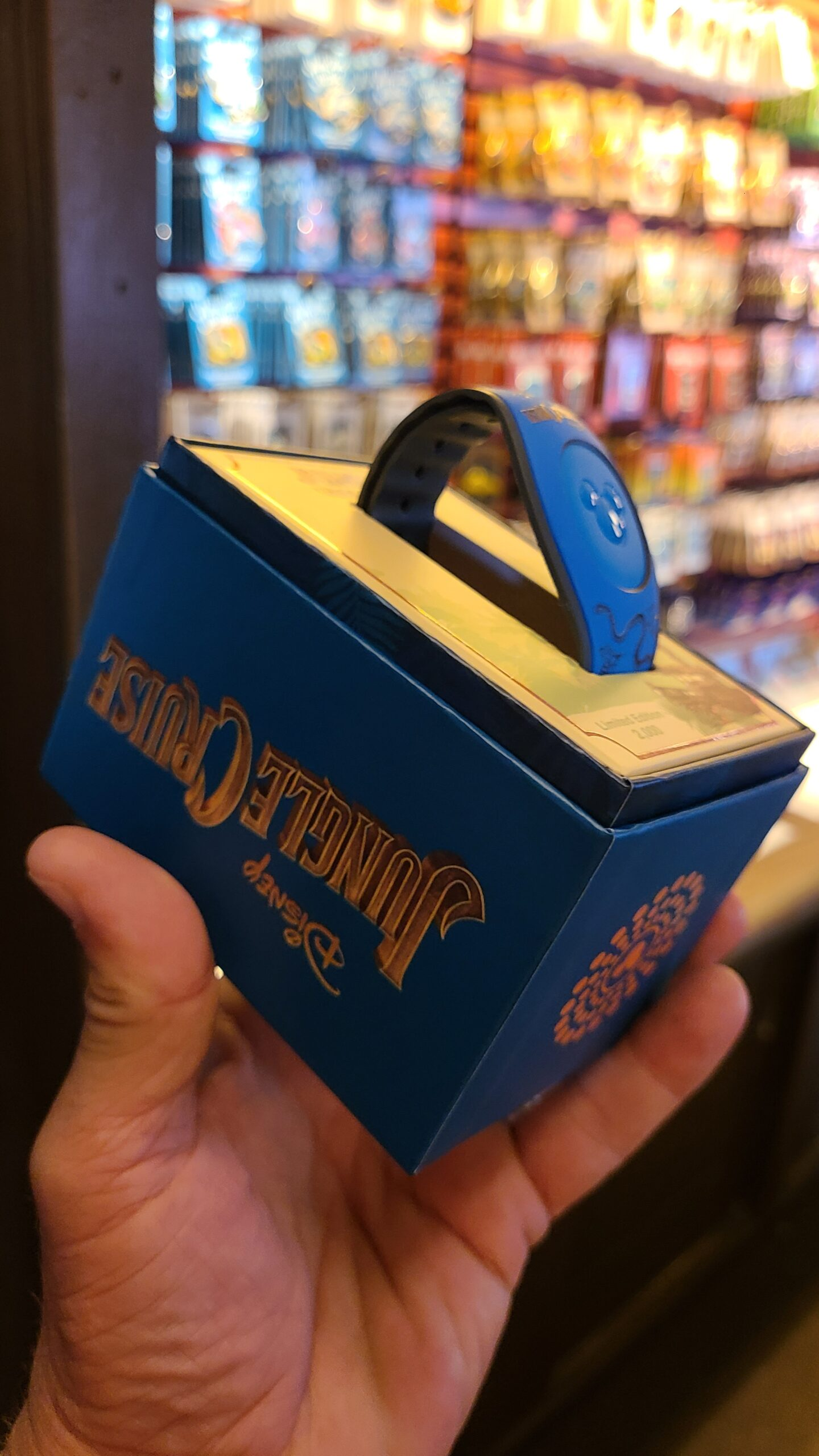 2 new Magic Bands Spotted in the Magic Kingdom 4