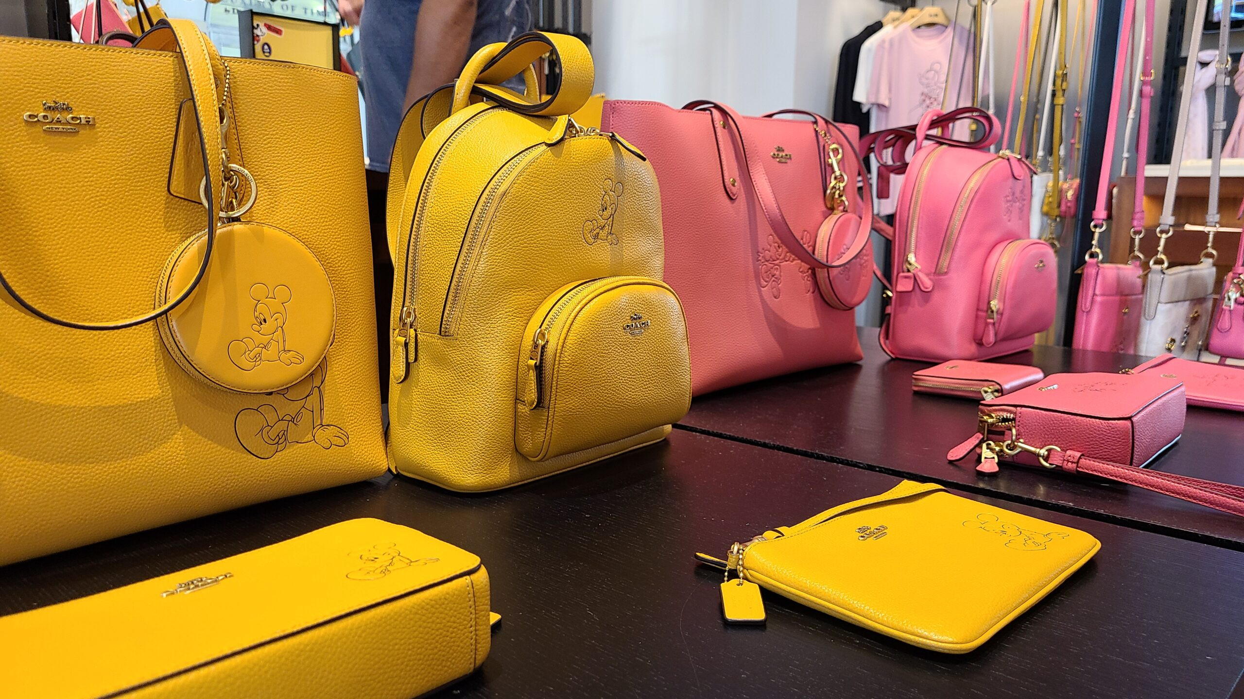 New Mickey & Minnie Coach Collection spotted at Disney Springs 13
