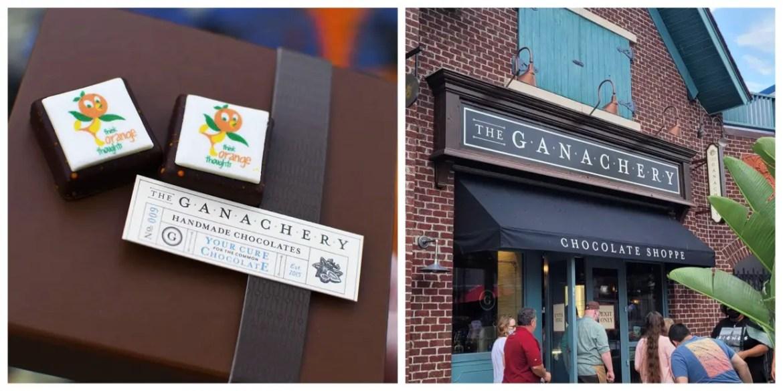 Special Annual Passholder Orange Bird Chocolate Square at The Ganachery