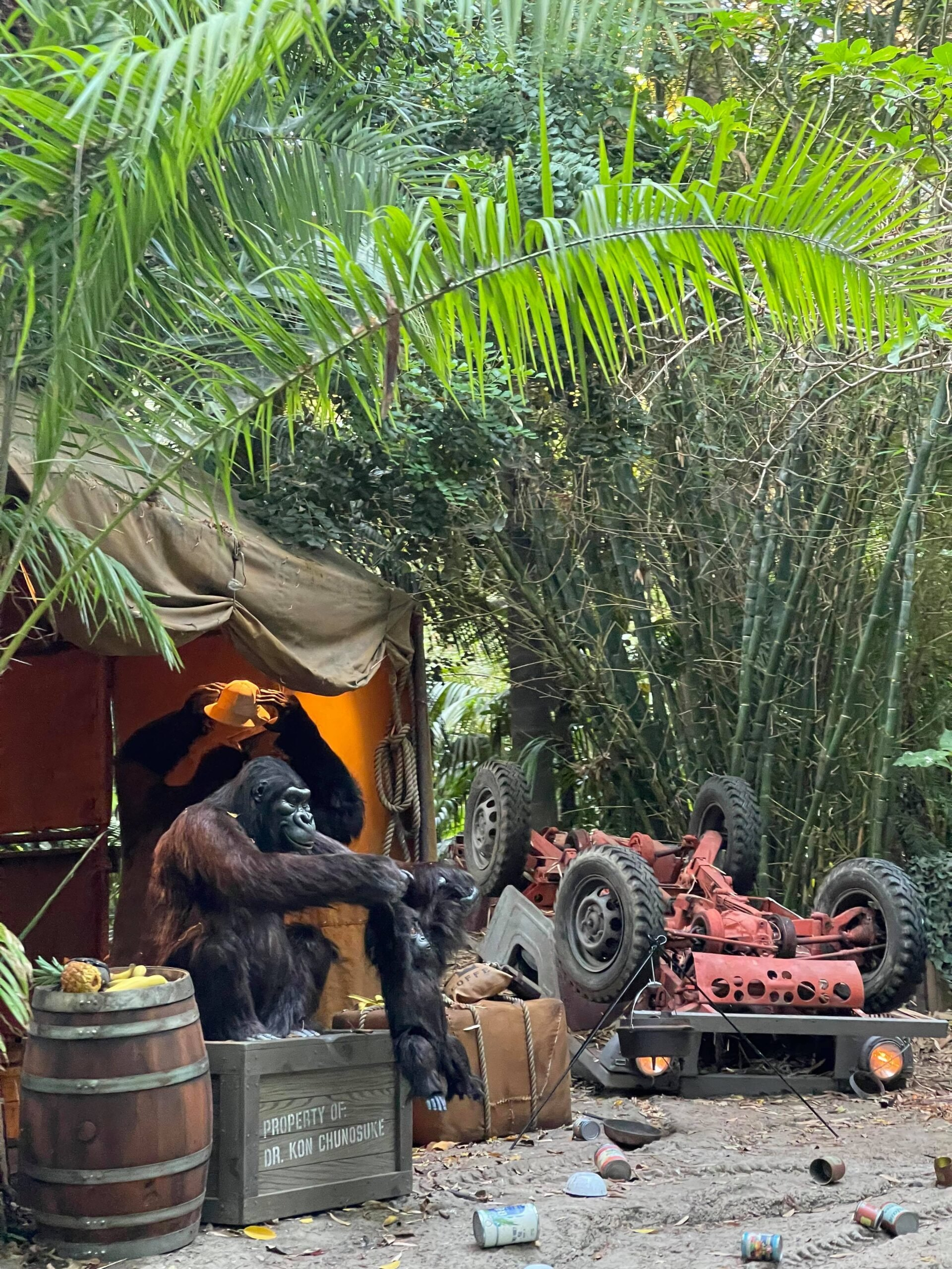 Take a voyage on the all new Jungle Cruise in Disneyland 5