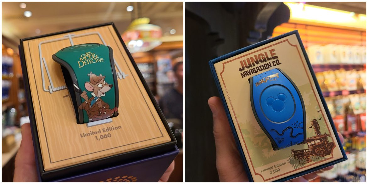2 new Magic Bands Spotted in the Magic Kingdom