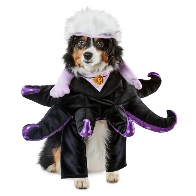 Celebrate Halloween With Iconic Disney Costumes 20