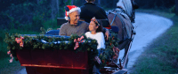 Holiday Sleigh Rides