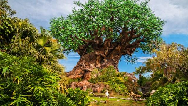 What is Disney Genie, Disney Genie+, and Lightning Lane 8