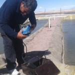 Evaluación física-química del agua de las pozas para la crianza de peces en Manazaya