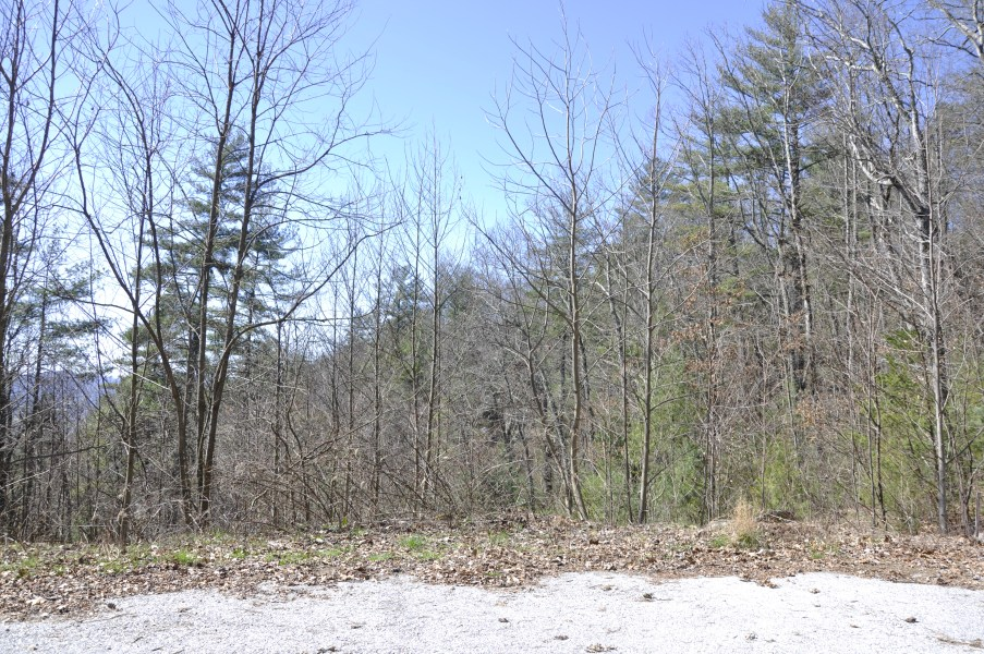 Lot 7 Sky Valley 9.85 acres