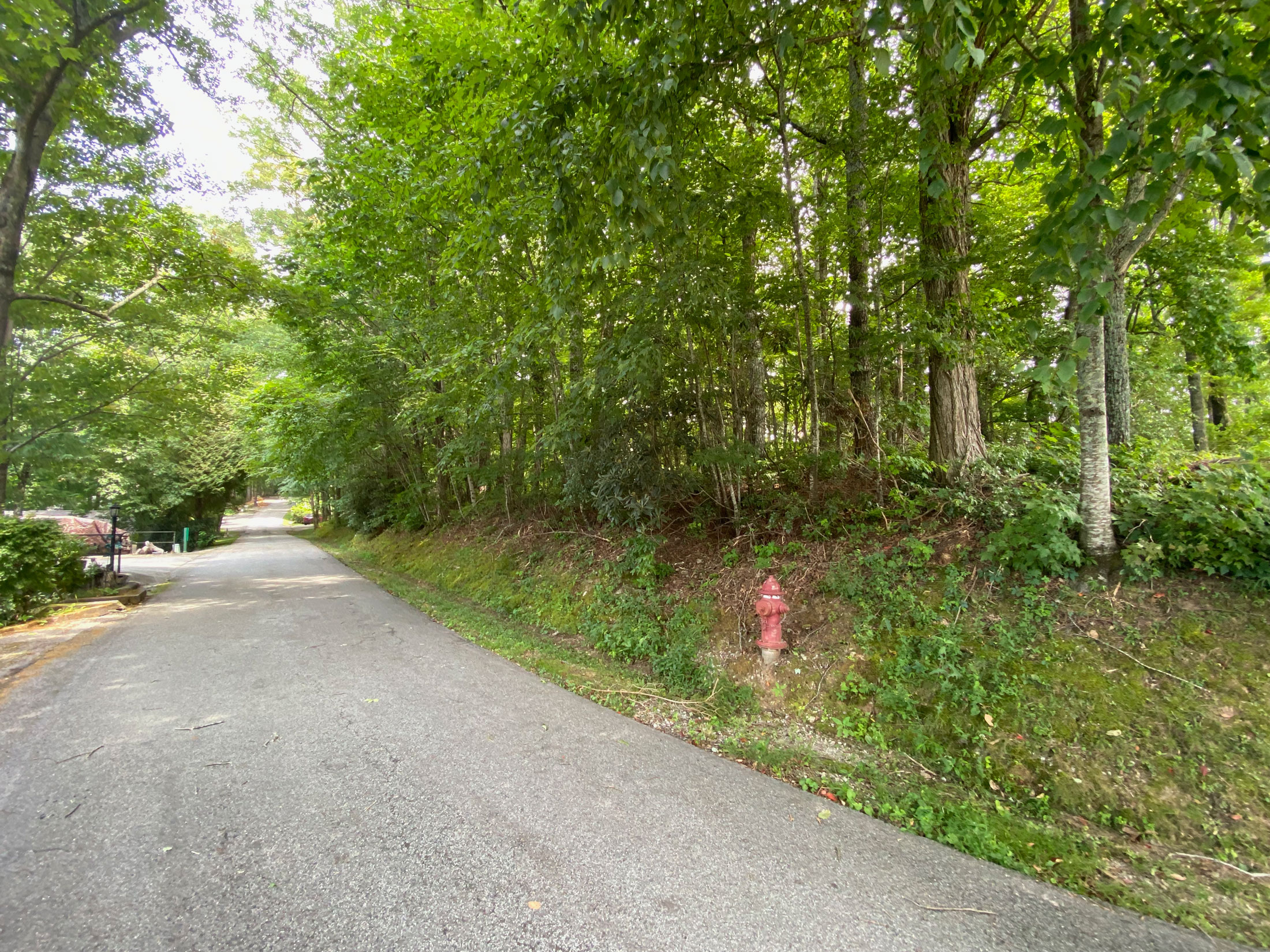 Lot 1 Pleasant Mountain Dr Sky Valley GA