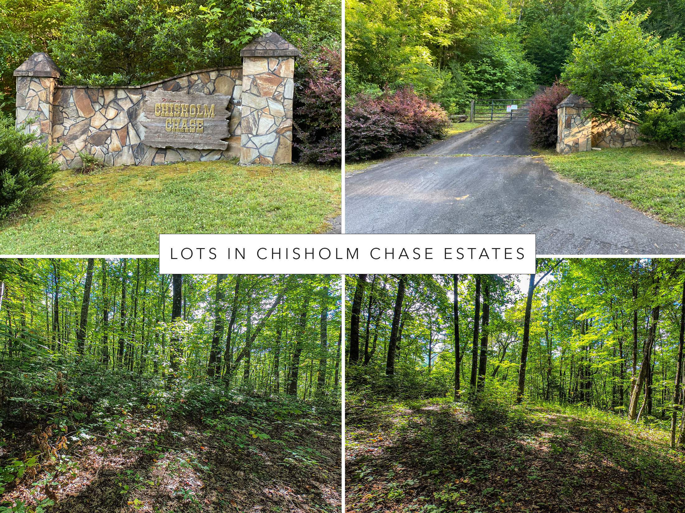 Lots-in-Chisholm-Chase-Estates
