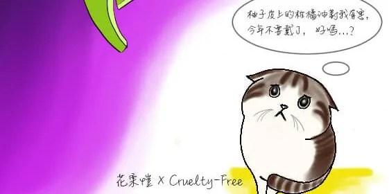 【中秋節快樂】毛孩為什麼不喜歡柚子帽?