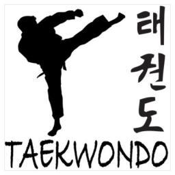taekwondo-image