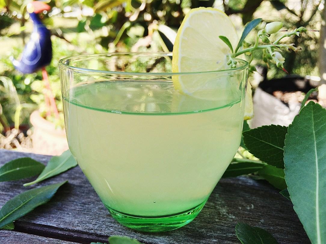 lemon&manukahoney