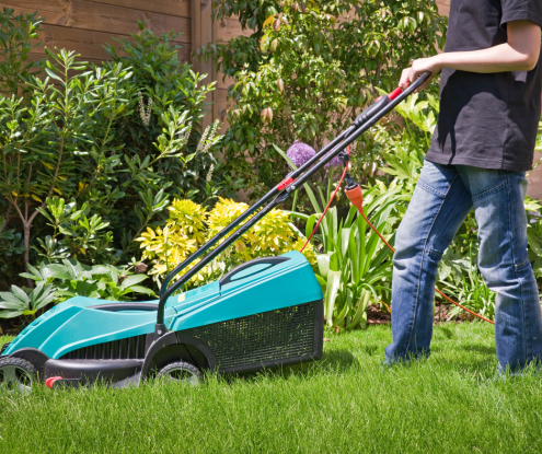 5 Ways to Care for Your Lawn This Summer