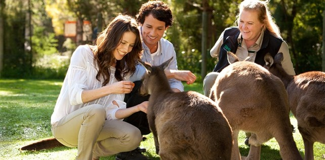 1430797355 hshero3 places to visit in melbourne