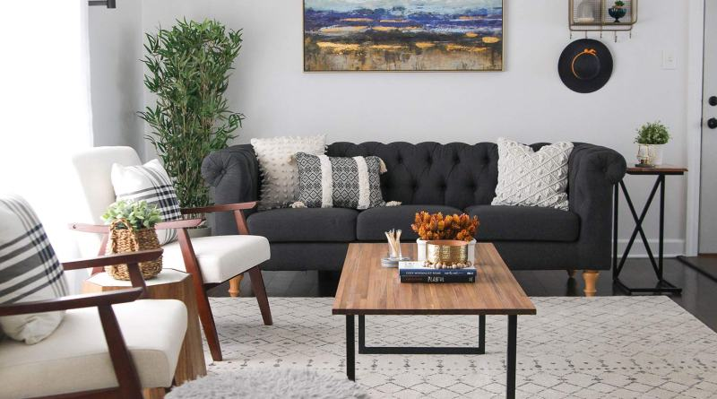 decorate small living room modern black white Plants That Look Like Roses