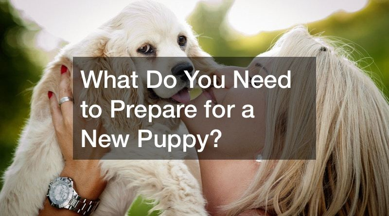 Pup 1 Prepare for a New Puppy
