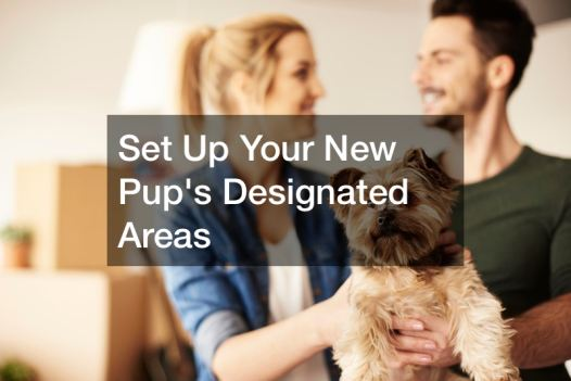 What Do You Need to Prepare for a New Puppy?