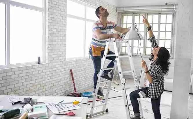 mice renovating hero Before Renovating Your House