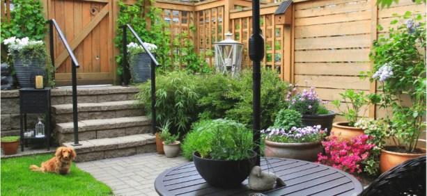 Backyard Transformation Ideas