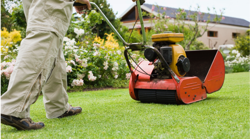 Monster House or Mansion? 4 Things to Avoid While Taking Care of Your Lawn