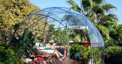 garden igloo geodesic dome 5 Plants to Decorate Your Garden