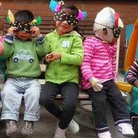 Adopciones en el Ecuador
