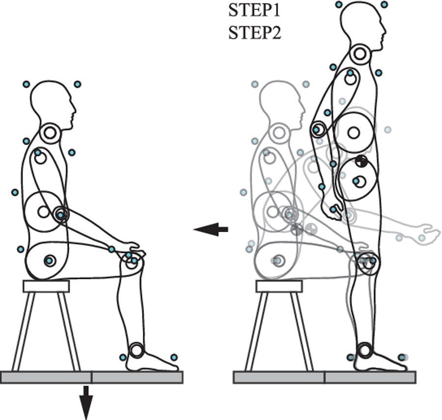 Does Manual Therapy Affect Functional and Biomechanical Outcomes of a Sit-To-Stand Task in a Population with Low Back Pain?