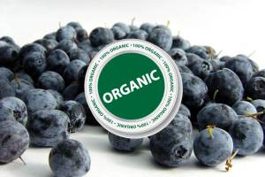 organic-blueberries-200-300