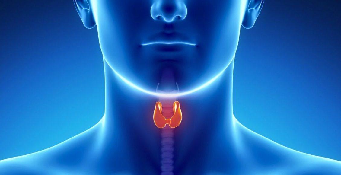 Complications of Hypothyroidism   Wellness Clinic