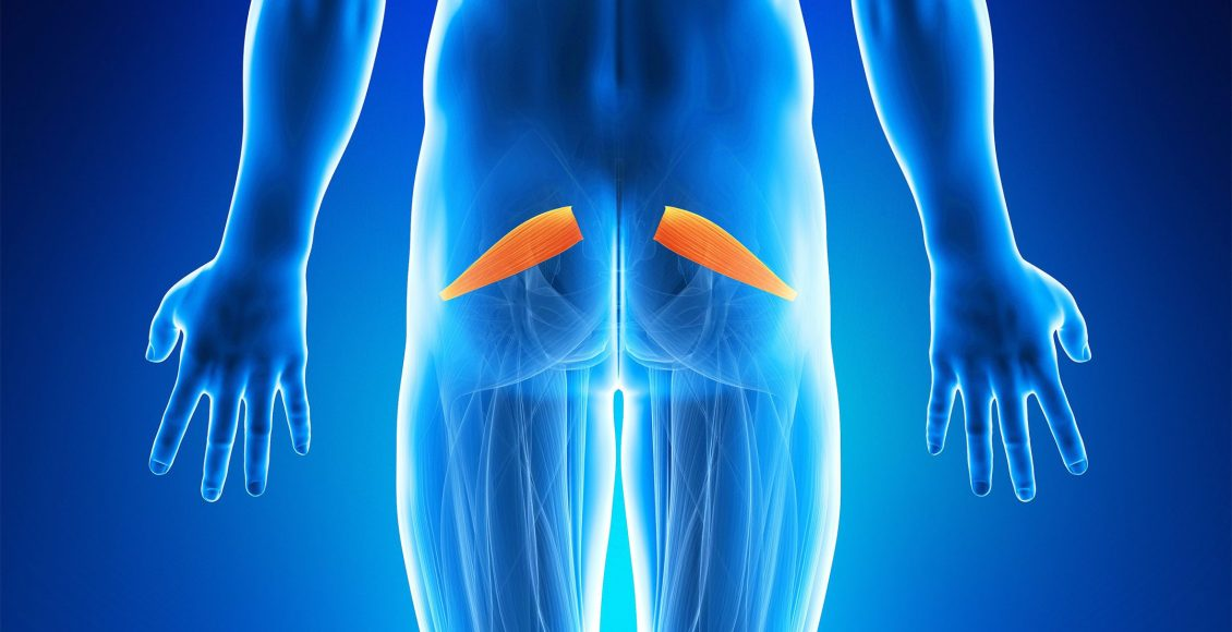Assessment and Treatment of Piriformis
