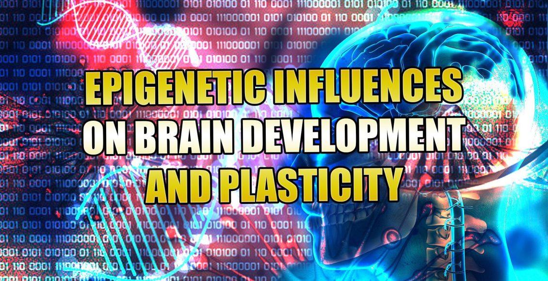 epigenetic el paso tx.