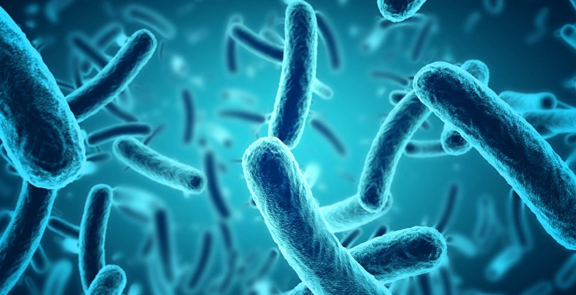 The Role Of The Microbiome In DNA Methylation   El Paso, TX Chiropractor