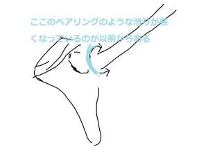 肩甲上腕関節の説明
