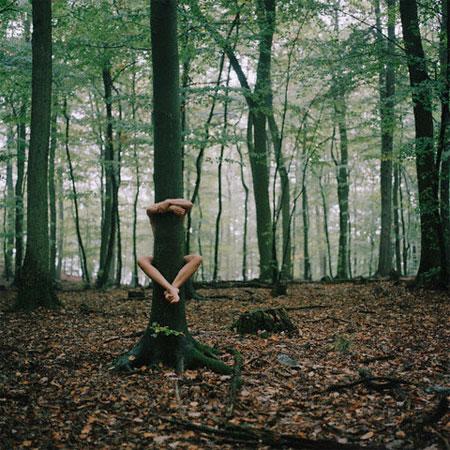treehug