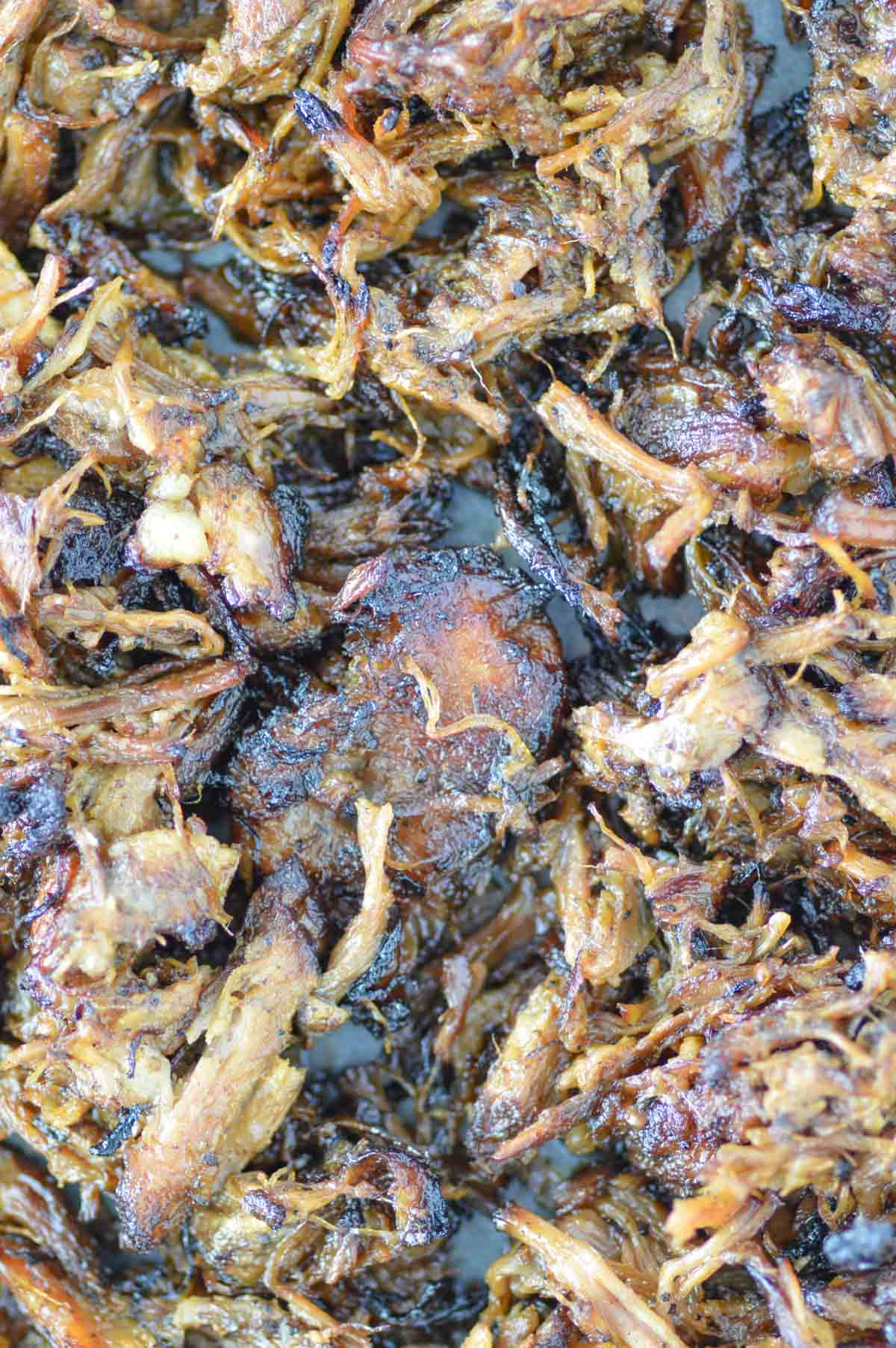 overhead shot of crispy pork carnitas