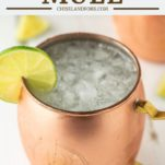 moscow mule in copper mug with lime