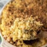 close-up of baked butternut squash mac and cheese in orange bowl