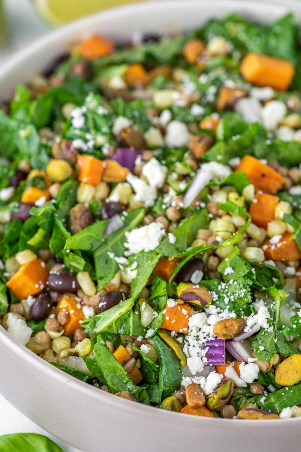 close-up of kale couscous salad