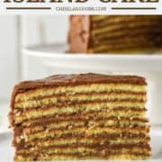 slice of yellow cake with 9 layers and chocolate frosting on white plate