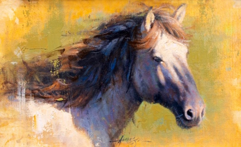 Study In Equine by Steve Atkinson
