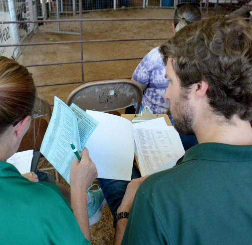 Prospective livestock buyers go through the sale list before the 2020 Central Texas Youth Fair Premium Sale Saturday, June 6.