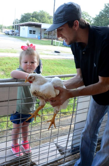 Ty Sanders introduces two-year-old Sage Edmond to a broiler after the Broiler Show at the Central Texas Youth Fair, Thursday June 5.