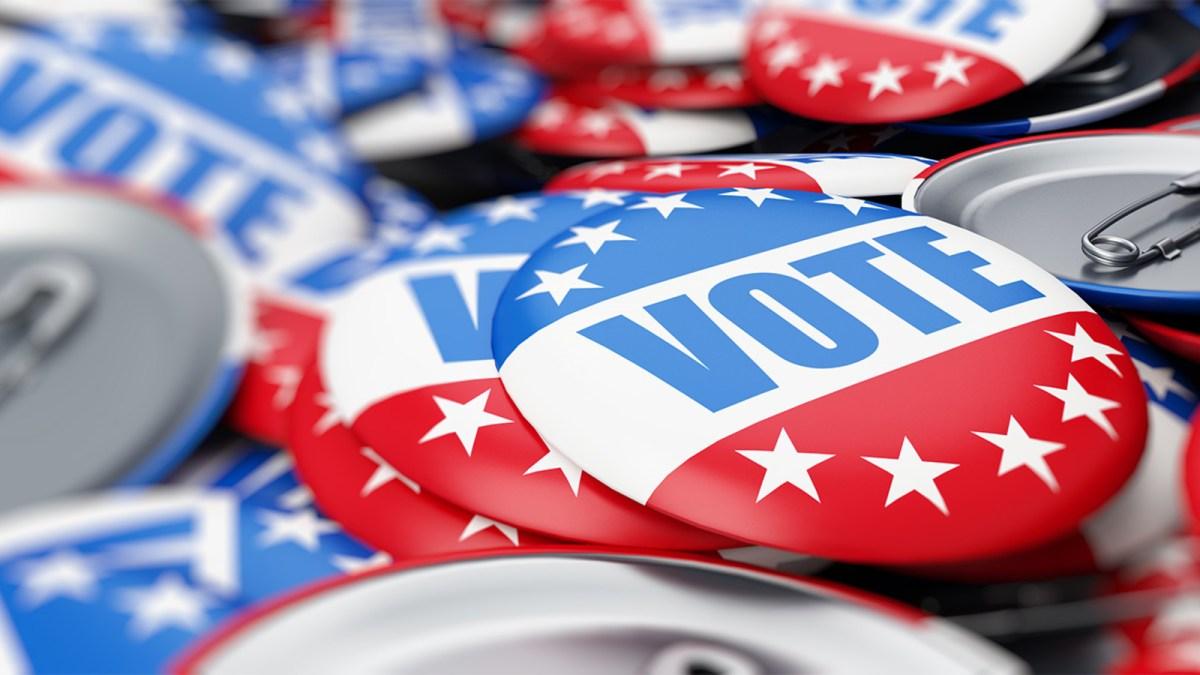 6316644_shutterstock-generic-voting-img