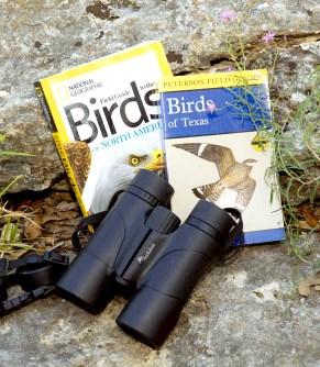 04-BirdWatchers-REVISED