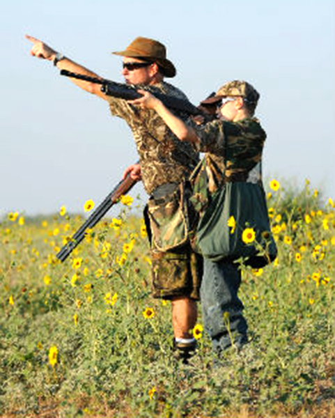 Father and son bond hunting dove in a sunflower field.
