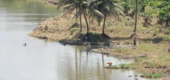 Gobierno incluyó partida de RD$2,500 millones para inversión agroforestal en el Sur