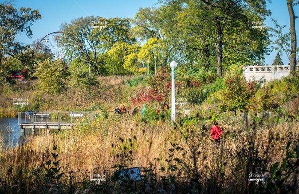 Nature Boardwalk Lincoln Park Chicago