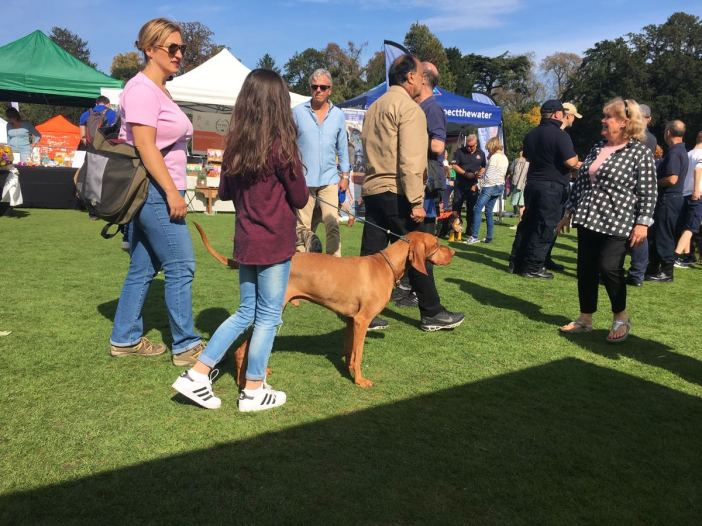 Chiswick House Dog Show 11