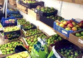Karen Liebreich Abundance London Apple store