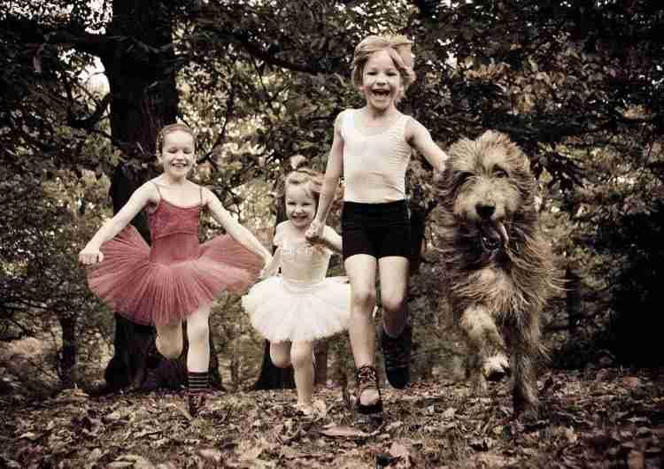 Lily, Bear, Pani and Harris