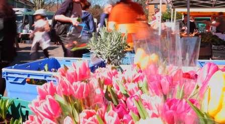 Food Market flowers